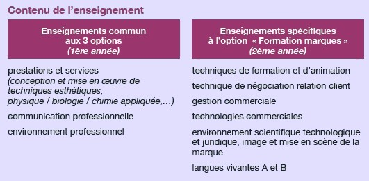 cv exemple   cosmetique  ridefl com